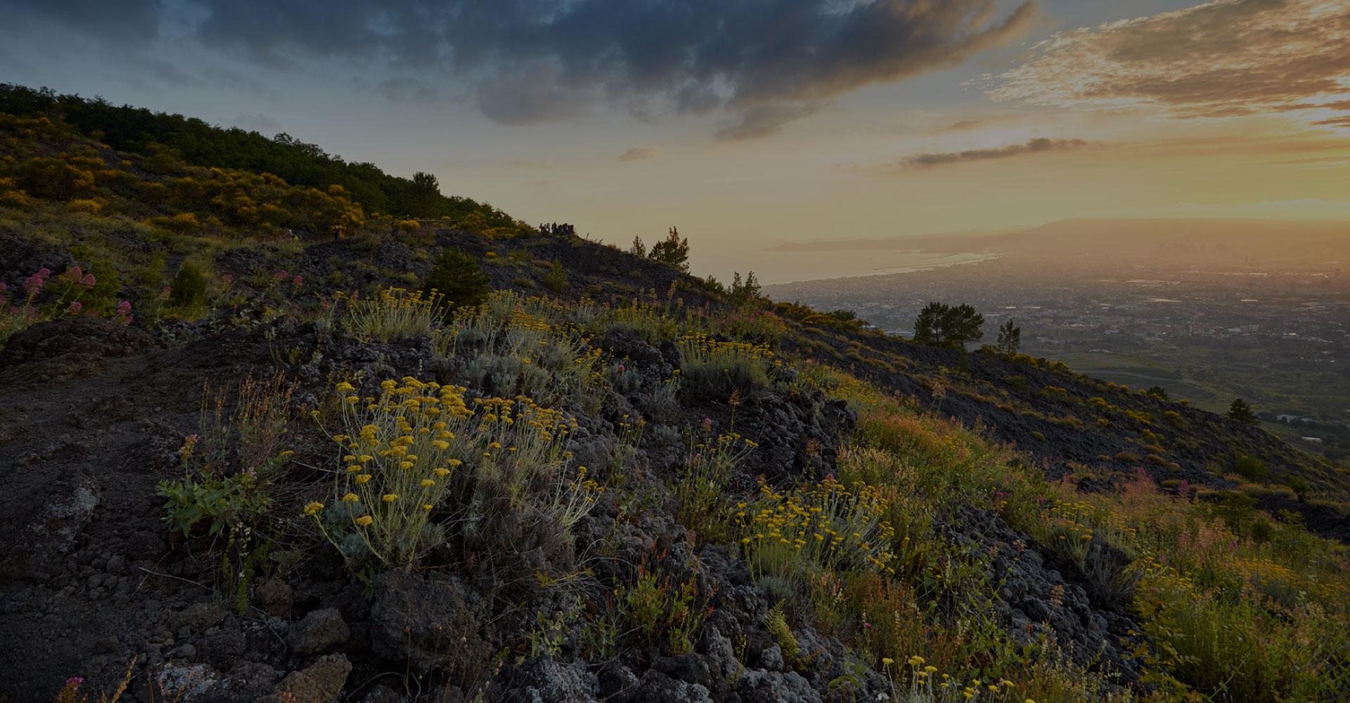 I Sentieri | Parco Nazionale del Vesuvio
