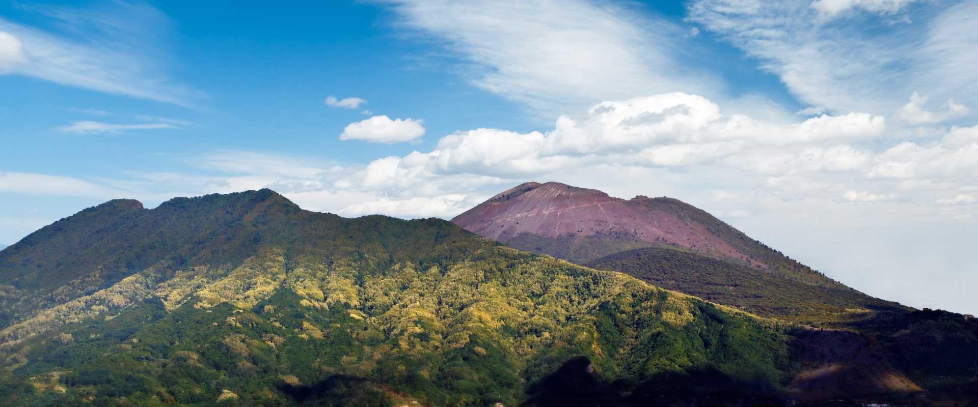 Ente Parco Nazionale del Vesuvio