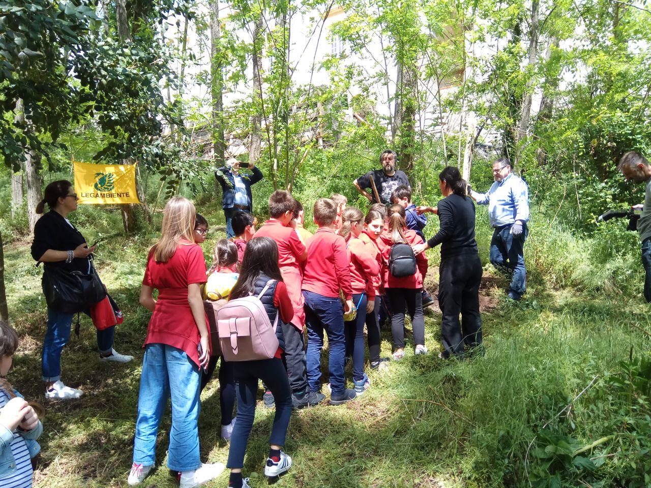 Piantumazione alberi di leccio nel Parco Nazionale del Vesuvio.