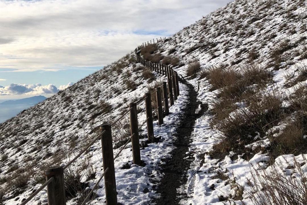 Ripartono le visite al Cratere, sentiero n.5 del Parco Nazionale del Vesuvio
